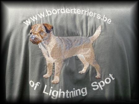 border terriers of lightning spot